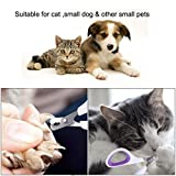 Suixian Style Cat Nail Clippers for Small