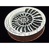 Sound of the stream 185 mm/Strumok (Ammonite) Great sound New Percussion Rainstick