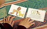 Yogi Fun Yogi kit Yoga Card Game with