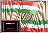 One Box Hungary Toothpick Flags%2C 100 S