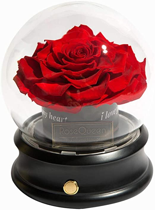 JLDN Altavoz Bluetooth Rosa Encantada en Vidrio, Rojo Rose Kit Completo Rosa Eterna Artificial Rosas Love Tokens Regalo para Día de la Madre Cumpleaños San Valentín,A: Amazon.es: Hogar