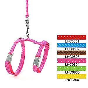 SMALLLEE_Lucky_Store Arnés Correa y Collar Ajustable de Lunares para Gato Correa de Paseo para Perro Pequeño Gatos y…