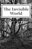 img - for The Invisible World: Lectures on British Romantic Poetry and the Romantic Imagination book / textbook / text book