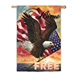 Star Spangled Eagle Vertical Flag