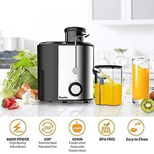 Bagotte Centrifuga Frutta e Verdura Professionale, 600W Estrattore di Succo a Freddo a 65MM Bocca Larga con 2 Velocità, Acciaio Inox, Facile Pulizia, Senza BPA - 2021 -