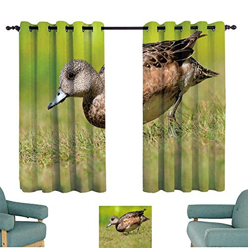 WinfreyDecor Decor Curtains American Wigeon Set of Two Panels 63