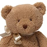 "Baby GUND My First Teddy Bear Stuffed Animal Plush in Brown, 10"""