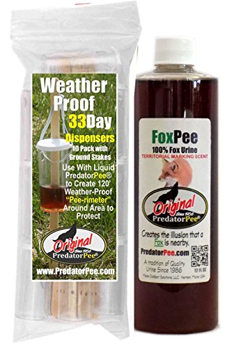 (PredatorPee - 100% Pure Fox Urine - 12oz Squeeze Bottle Combo with 33 Day Dispensers)