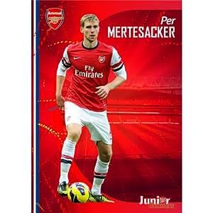 Per Mertesacker Poster On Silk <60cm x 85cm, 24inch x 34inch> - Cartel de Seda - BCC711