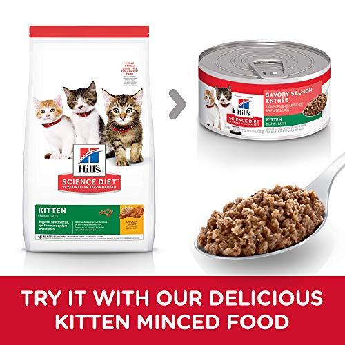 Hill's Science Diet Dry Cat Food, Kitten, Chicken Recipe 7