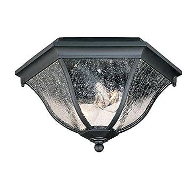 Acclaim 5615BK Flush Mount Collection 2-Light Ceiling Mount Outdoor Light Fixture, Matte Black
