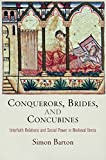 Conquerors, Brides, and Concubines: Interfaith Relations and Social Power in Medieval Iberia (The Middle Ages Series)