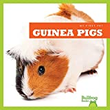 Guinea Pigs (Bullfrog Books: My First Pet)