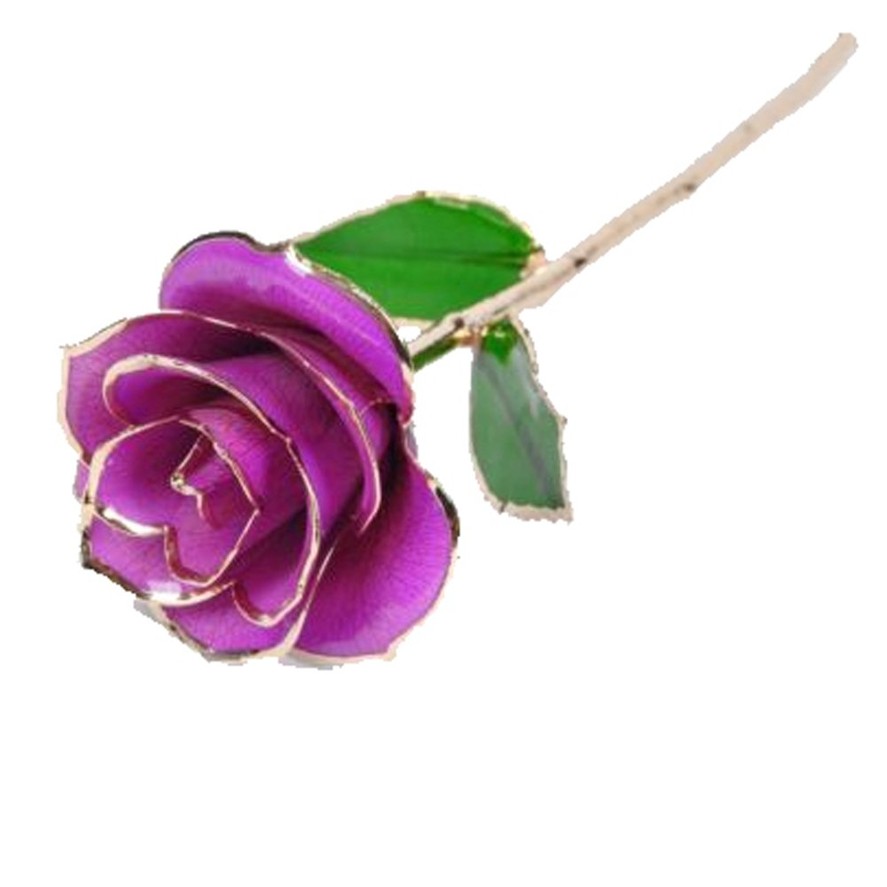 Purple Rose: Amazon.com