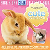 Cute Overload Page-A-Day Calendar 2010