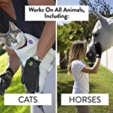 Handson Pet Grooming Gloves - Patented #1