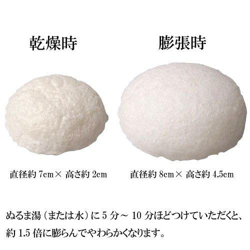 Makanai Cosume Freeze Konjac Sponge (For Face-wash)