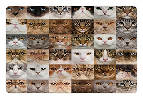 Lunarable Cat Lover Pet Mat for Food and Water, Collage of Cat Heads Breed British Shorthair Chartreux Turkish Angora, Rectangle Non-Slip Rubber Mat for Dogs and Cats, White Grey Sand Brown