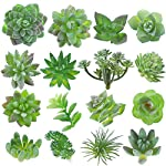 Fake-Succulent-16-Pcs-Artificial-Succulents-Faux-Succulents-Artificial-Succulents-Plants-Fake-Succulent-Unpotted-Bulk-Artificial-Succulents-for-Birthday-Home-Decor-Indoor-Wall-Garden-Hotel-Desk-DIY