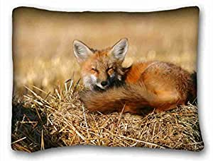 Soft Pillow Case Cover Animal Custom Cotton & Polyester Soft Rectangle Pillow Case Cover 20x26 inches (One Side) suitable for Queen-bed