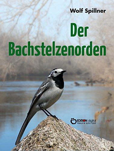 Spillner (German Edition)