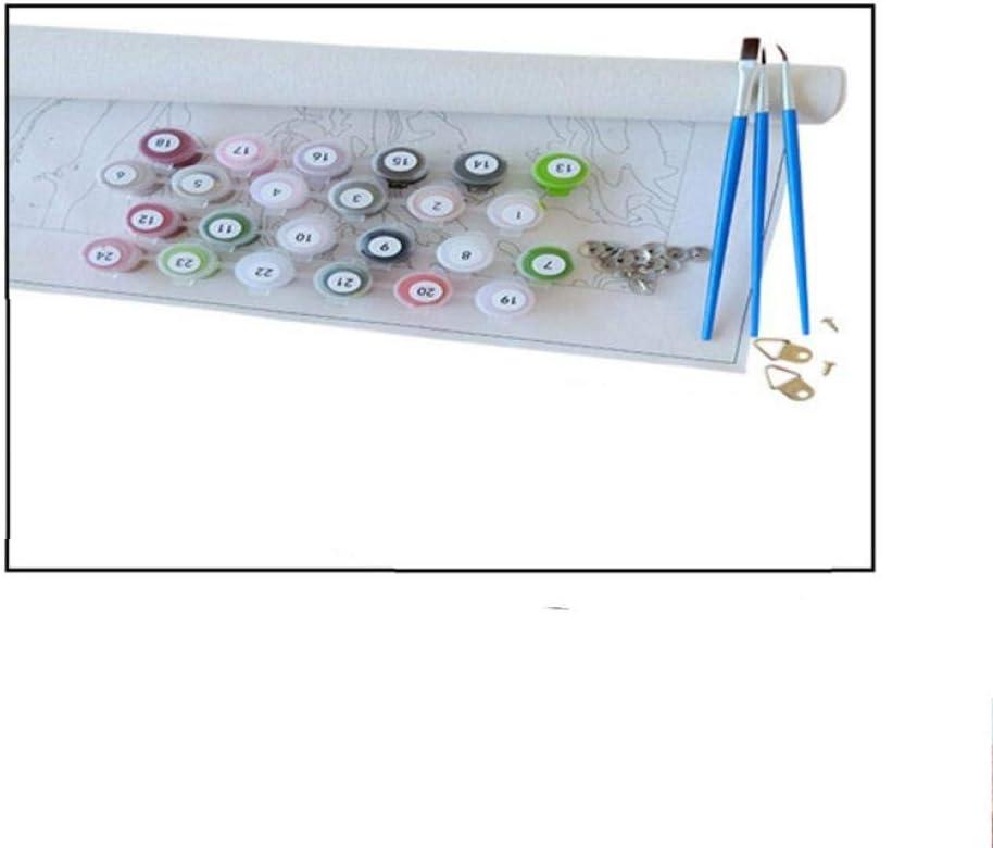 Malen nach Zahlen Kits 40X50CM Malen nach Zahlen f/ür Erwachsene und Kinder DIY /Ölgem/älde Geschenk Rom DIY /Ölgem/älde