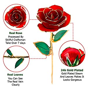 DuraRose Authentic Rose with Stand and Love Card, Stem Dipped in 24k Gold - Best Gift for Loves Ones. Ideal for Valentine's Day, Mother's Day, Anniversary, Birthday, (Adorable Red) 3