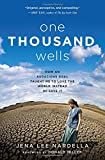 img - for One Thousand Wells: How an Audacious Goal Taught Me to Love the World Instead of Save It book / textbook / text book