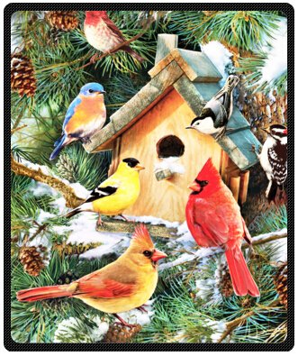winter cardinal Birds Design Throw Blanket Fleece 50