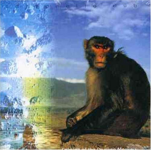 Calming of the Drunken Monkey by Salmonella Dub
