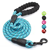 #5: 5 FT Strong Dog Leash with Comfortable Padded Handle and Highly Reflective Threads for Medium and Large Dogs (Blue)