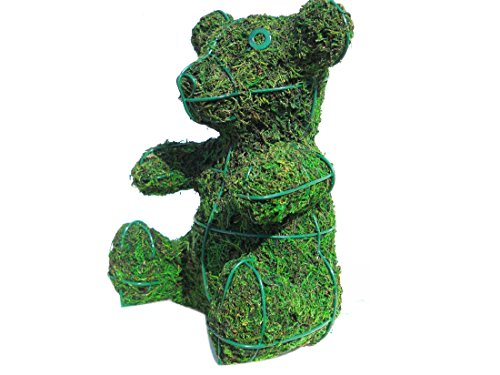 SK Moss topiary Gift Express Baby Bear 8 Inches High w/ Moss Topiary Frame , Handmade Animal Decoration