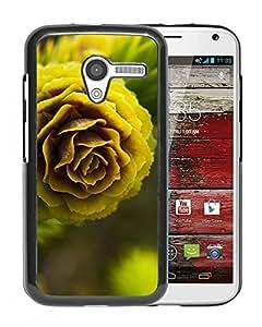 Pine Nut Macro Durable High Quality Motorola Moto X Phone Case