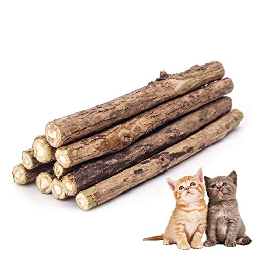 Zoiibuy Cat Catnip Stick,Matatabi Silvervine Dental Treats Natural Wood Chew Toy Cat Teeth Cleaning Grinding Molar Sticks for Cat Kitten Kitty Play and Relax-10PCS