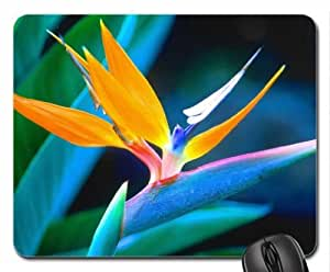 Bird Of Paradise Mouse Pad, Mousepad (Flowers Mouse Pad)