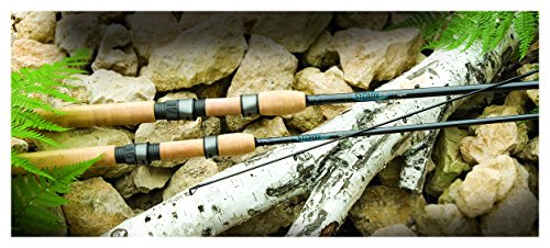 St Croix Avid Spinning Rods