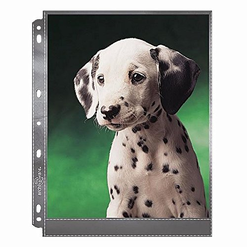 Archivalware Lineco Polypropylene Photo Album Pages, 9 X 11.375 inches, Holds 8 X 10 inch Photos, Pack of 25 (AW24911-25), Black