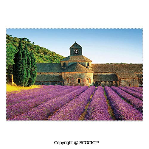 SCOCICI Set of 6 Printed Dinner Placemats Washable Fabric Placemats Abbey of Senanque in France Architecture Countryside Blooming Rows Scenic for Dining Room Kitchen Table Decoration