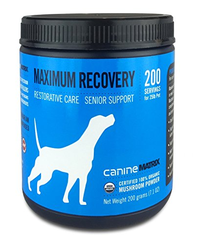 c Mushroom Supplement for Dogs, MRM Recovery, 200 grams (Canine Supplement)