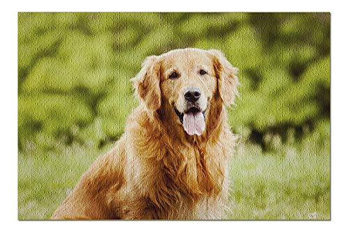 (Golden Retriever Portrait Photography A-90761 (20x30 Premium 1000 Piece Jigsaw Puzzle, Made in USA!) )