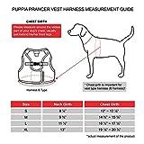 Puppia Prancer Harness B - Black - L