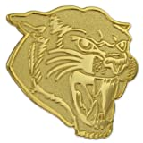 PinMart's Gold Chenille COUGARS Mascot Letterman's Jacket Lapel Pin 1''