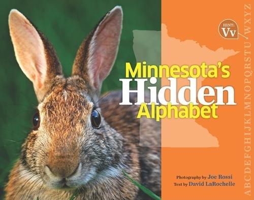 Hidden Alphabet - 3