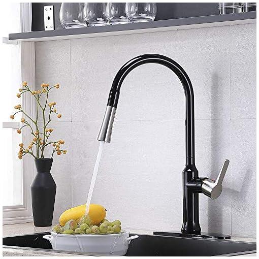 Farmhouse Kitchen Kitchen Faucet,Matte Black&Brushed Nickel Kitchen Sink Faucet,Best Modern Pull Down Farmhouse Sink Faucet,Commercial… farmhouse sink faucets