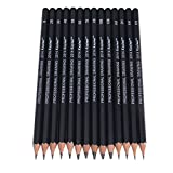 LING'S SHOP 14Pcs Professional Creative Studio Graphite Sketch Set Art Drawing Pencils Kit 12B 10B 8B 7B 6B 5B 4B 3B 2B 1B 2H HB