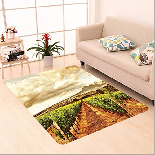 Nalahome Custom carpet or Grape Valley Clouds over Vineyard Natural Fruit Plantation in Autumn Garden Theme Green Brown area rugs for Living Dining Room Bedroom Hallway Office Carpet (4' X (Vineyard Brown Area Rug)