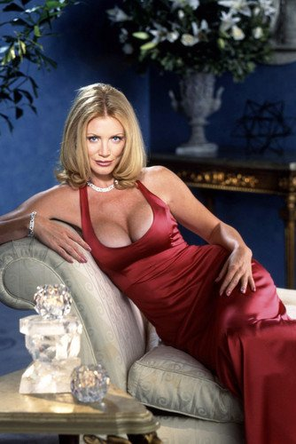 Shannon Tweed 24X36 Poster Very Busty Sexy Vred Dress Seductive Pose