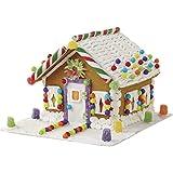 Wilton 2104-1951 Pre-Assembled Petite Gingerbread House, Multicolor