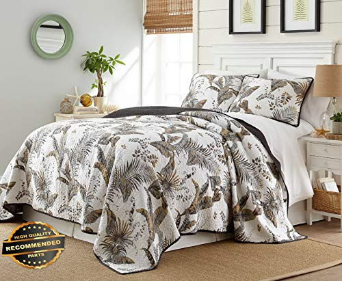 - Werrox Tropical Palm Tree Foliage Vintage Washed 100%-Cotton Reversible Quilt Set Queen Size | Quilt Style QLTR-291266847