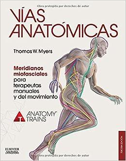 Vías Anatómicas. Meridianos Miofasciales Para Terapeutas Manuales Y Del Movimiento - 3ª edición: Amazon.es: Thomas W. Myers: Libros